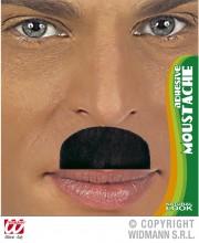 fausses moustaches, postiche, moustache postiche, fausses moustaches réalistes, fausse moustache de déguisement, moustache de charlot Moustache de Charlot