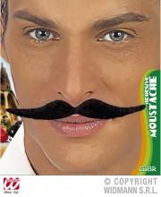 fausses moustaches, postiche, moustache postiche, fausses moustaches réalistes, fausse moustache de déguisement, moustaches dali Moustache Dali, Noire