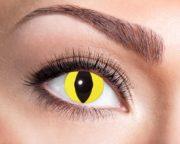 lentilles jaunes de chat, lentilles halloween, lentilles fantaisie, lentilles déguisement, lentilles déguisement halloween, lentilles de couleur, lentilles fete, lentilles de contact déguisement, lentilles oeil de chat Lentilles Oeil de Chat, Jaunes, Yellow Cat
