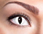 lentilles blanches de chat, lentilles halloween, lentilles fantaisie, lentilles déguisement, lentilles déguisement halloween, lentilles de couleur, lentilles fete, lentilles de contact déguisement, lentilles oeil de chat Lentilles Oeil de Chat, Blanches, Black Cat