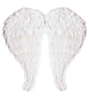 ailes de déguisement, ailes pour se déguiser, ailes d'anges, ailes d'ange, ailes en plumes, ailes blanches Ailes d'Ange en Plumes, Blanches