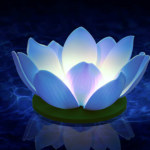 bougie flottante nymphea blanche, décorations à LED, décorations fêtes LED, décorations fausses fleurs magasin, acheter lanternes LED Bougie Flottante à LED, Nymphea Bleue