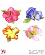 pince hibiscus, fleur hawaï Barrettes Fleurs Hibiscus