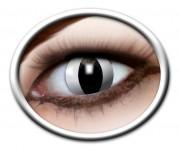 lentilles halloween, lentilles fantaisie, lentilles déguisement, lentilles déguisement halloween, lentilles de couleur, lentilles fete, lentilles de contact déguisement, lentilles blanches, lentilles oeil de chat halloween Lentilles Oeil de Chat, Blanches, Black Cat