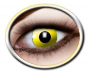 lentilles halloween, lentilles fantaisie, lentilles déguisement, lentilles déguisement halloween, lentilles de couleur, lentilles fete, lentilles de contact déguisement, lentilles jaunes Lentilles Jaunes