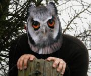 masque de hibou, masque de déguisement, masque animaux, accessoire déguisement animaux, masque d'animal déguisement, masques d'animaux déguisement, se déguiser en animal Masque de Hibou