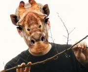 masque de girafe, masque de déguisement, masque animaux, accessoire déguisement animaux, masque d'animal déguisement, masques d'animaux déguisement, se déguiser en animal Masque de Girafe, en Carton