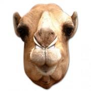 masque de chameau, masque de déguisement, masque animaux, accessoire déguisement animaux, masque d'animal déguisement, masques d'animaux déguisement, se déguiser en animal Masque de Chameau, en Carton