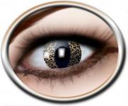 lentilles oeil de chat, lentilles léopard, lentilles halloween, lentilles fantaisie, lentilles déguisement, lentilles déguisement halloween, lentilles de couleur, lentilles fete, lentilles de contact déguisement, lentilles Lentilles Oeil de Chat, Leo Cat