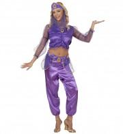 déguisement de danseuse orientale femme, costume jasmine femme, déguisement jasmine femme, costume danseuse orientale déguisement femme, déguisement femme orientale Déguisement Danseuse Orientale