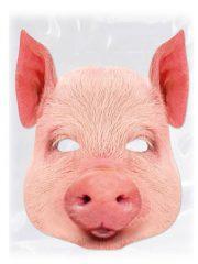 masque de cochon, masque de déguisement, masque animaux, accessoire déguisement animaux, masque d'animal déguisement, masques d'animaux déguisement, se déguiser en animal Masque de Cochon, en Carton