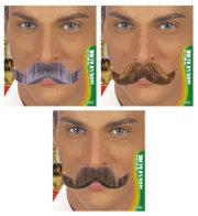 Moustache Ambassadeur, Blonde, Châtain et Grise