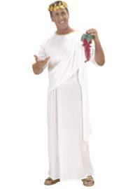 déguisement romain homme, déguisement de romain adulte, costume de romain homme, costume romain adulte, déguisement de gladiateur homme, déguisement soirée romaine, déguisement romains adultes, toge romaine adulte Déguisement Romain, Toge Blanche