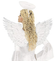ailes de déguisement, ailes pour se déguiser, ailes d'anges, ailes d'ange, ailes en plumes, ailes blanches, accessoires déguisement ailes, Ailes d'Ange en Plumes, Blanches et Argent