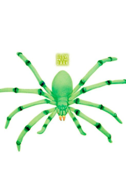 Araignée Modulable Géante, Phospho