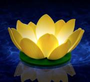 bougie flottante nymphea blanche, décorations à LED, décorations fêtes LED, décorations fausses fleurs magasin, acheter lanternes LED Bougie Flottante à LED, Nymphea Blanche