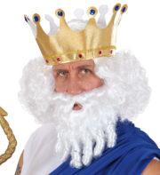 perruque pour homme, perruque pas chère, perruque de déguisement, perruque homme, perruque blanche, perruque avec barbe, perruque dieu grec, perruque blanche et barbe Perruque + Barbe, Dieu Grec, Blanche
