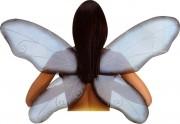 ailes de déguisement, ailes pour se déguiser, ailes d'insectes, ailes pour adultes, ailes de mouche, ailes de libellule Ailes de Mouche ou Libellule