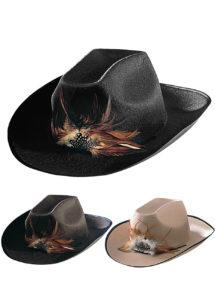 chapeau de cowboy, chapeaux de cowboy, chapeaux de cow boy, accessoires déguisements cowboys, Chapeau de Cowboy Dallas