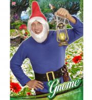 chapeaux de nain, coiffe de nains, chapeaux barbe, chapeaux de lutin, accessoires déguisements nains Chapeau de Gnome, Cheveux et Barbe