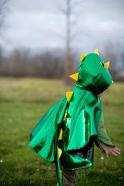 cape de baby dragon, déguisement dragon enfant, déguisement dragon garçon Cape de Dragon Baby