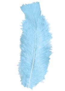 plumes de décoration, plumes pour masques, plumes de déguisements, plumes, sachet de plumes, plumes bleu ciel, plumes turquoises, plumes d'oiseau, plumes bleues, Plumes Bleu Ciel