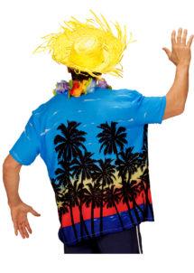 chemise palmiers déguisement, chemise hawaïenne, chemise hawaï déguisement, déguisement hawaï adulte, déguisement hawaï homme, chemise à fleurs déguisement, Chemise Hawaïenne, Palm Beach