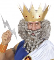 perruque pour homme, perruque pas chère, perruque de déguisement, perruque homme, perruque grise, perruque avec barbe, perruque dieux grec Perruque + Barbe Character Curly, Grise