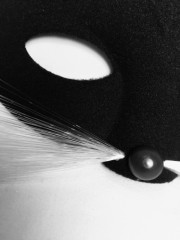 masque de chat, loup, accessoire chat déguisement, déguisement de chat, masque de hat Loup Chat Tabby, Noir