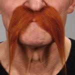 fausses moustaches, postiche, moustache postiche, fausses moustaches réalistes, fausse moustache de déguisement, moustache rousse, moustache de gaulois, moustache rousse Moustache de Gaulois, Luxe, Rousse