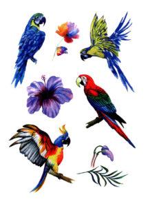 faux tatouages, tatouages temporaires, tatouages perroquets, Tatouages Temporaires, Perroquets et Fleurs Tropicales