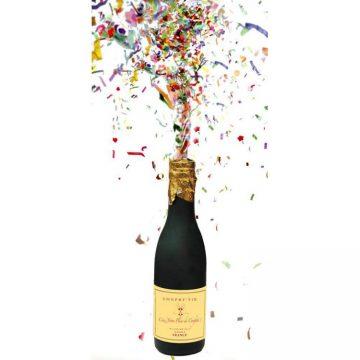 bouteille de champagne canon serpentins et confettis aux feux de la f te paris. Black Bedroom Furniture Sets. Home Design Ideas