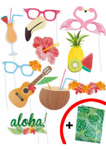 kit photo booth, accessoires Photo Booth, kit photos, Kit Photo Booth, Hawaï