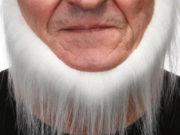 fausse barbe, fausses moustaches, postiche, barbe postiche, fausse barbe réaliste, fausse barbe de déguisement, barbe de nain, barbe collier, barbe blanche Barbe, Luxe, Collier Barbe Blanche