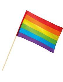 drapeau gay pride, drapeau gaypride, drapeau marche des fiertés, drapeau LGBT, drapeau arc en ciel, drapeau multicolore, Drapeau Arc en Ciel, sur Baton