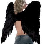 ailes de démon, ailes plumes noires déguisements, ailes d'ange noir, ailes de démons plumes noires, ailes d'ange noir, ailes d'ange en plumes noires Ailes d'Ange en Plumes Noires, 73 cm