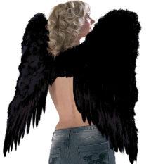 ailes de démon, ailes plumes noires déguisements, ailes d'ange noir, ailes de démons plumes noires, ailes d'ange noir, ailes d'ange en plumes noires, Ailes d'Ange en Plumes Noires, 73 cm