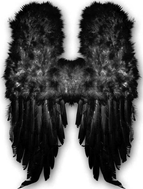 ailes de démon, ailes plumes noires déguisements, ailes d'ange noir, ailes de démons plumes noires, ailes d'ange noir, ailes d'ange en plumes noires Ailes d'Ange en Plumes Noires, 60 cm