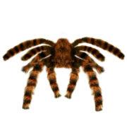 fausse araignée, araignées halloween, accessoire araignée halloween, accessoire décorations halloween, décorations araignées halloween, décorations halloween, fausse araignée tarentule géante Araignée Tarentule Velue, Fausse Fourrure