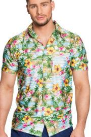 chemise hawaï homme, chemise hawaïenne homme, accessoire hawaï déguisement, soirée hawaï, accessoire déguisement soirée tropicale, colliers hawaïens, déguisement hawaïen homme Chemise Hawaïenne, Paradise