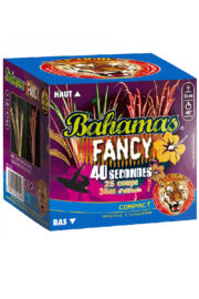 feux d'artifice bahamas, feux d'artifice automatiques, achat feux d'artifice paris, feux d'artifices compacts, feux d'artifices pyragric Feux d'Artifices, Compacts, Bahamas Fancy