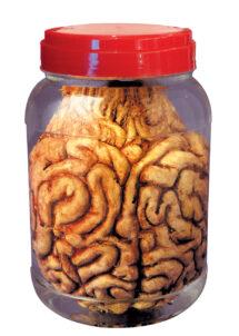 pot laboratoire halloween, décoration halloween, faux cerveau, Bocal de Laboratoire, Cerveau dans Formol