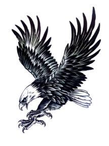 tatouage temporaire, faux tatouage, tatouage aigle, tatouage rocker, Tatouages Temporaires, Aigle Royal