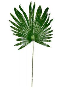 feuille de palmier, feuille tropicale, décorations tropicales, décorations hawaïennes, Feuille de Palmier Décorative, 68 cm