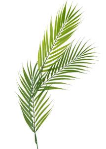 feuille de palmier, feuille tropicale, décorations tropicales, décorations hawaïennes, Branche de 3 Feuille de Palmier, sur Tige