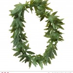 collier d'herbe, collier ganja, accessoire déguisement, accessoire rasta déguisement, accessoire déguisement rasta Collier d'Herbe Ganja